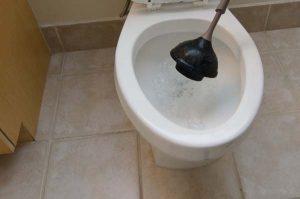 Plumbing Embarrassments